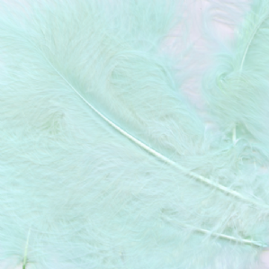 Light Blue Feathers for Balloons - Eleganza 50g Bag